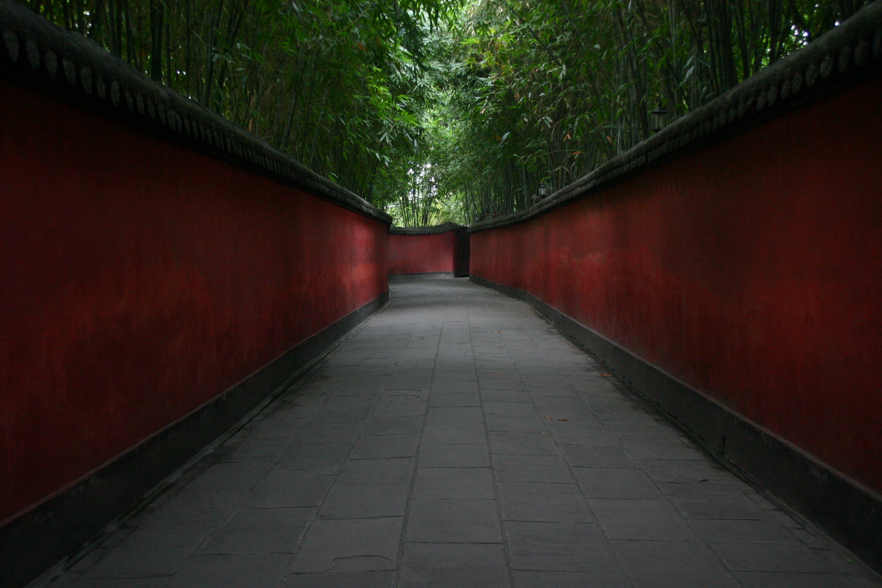 red wall with bamboo